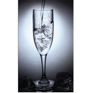 301 COAST INTL   KITCHEN SUPPLIES RV 6Oz Champagne Glass 4Pk