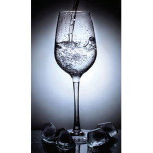302 High Glass 4-Pack 11 oz Shatterproof Wine Glasses